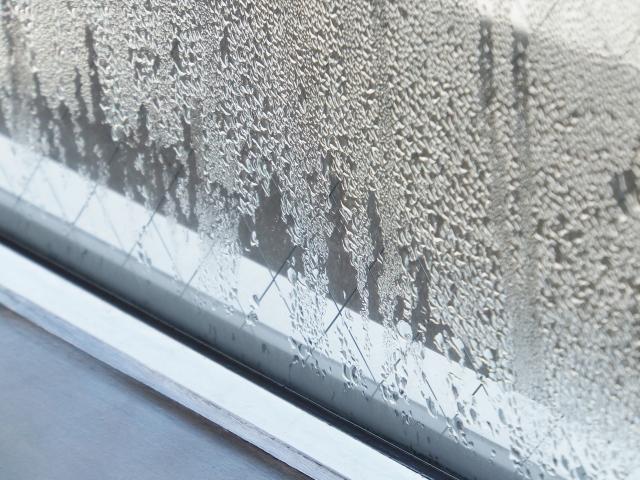 窓に付いた水滴 結露