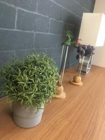 人口観葉植物光触媒